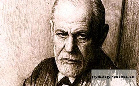 Froidas apie varpos pavydą